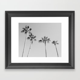 Black Palms // Monotone Gray Beach Photography Vintage Palm Tree Surfer Vibes Home Decor Framed Art Print