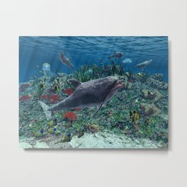 Dolphins play in the reef Metal Print
