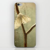 moth iPhone & iPod Skins featuring moth by Nature In Art...
