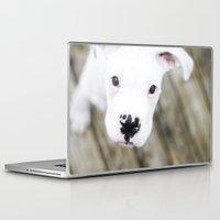 boxer Laptop & iPad Skins featuring Boxer by sara montour