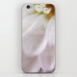 Colorfully Autum iPhone Skin