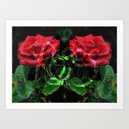Roses V2 Art Print