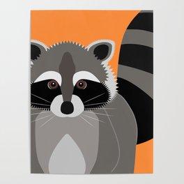 Raccoon Mischief Poster