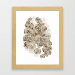 Coral Texture Framed Art Print