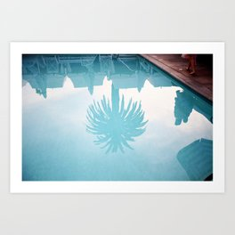 Palm In Pool Art Print