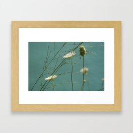 Aquamarine nature Framed Art Print