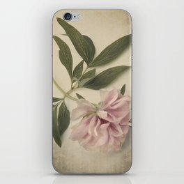 Scents of Spring - Pink Peony ii iPhone Skin
