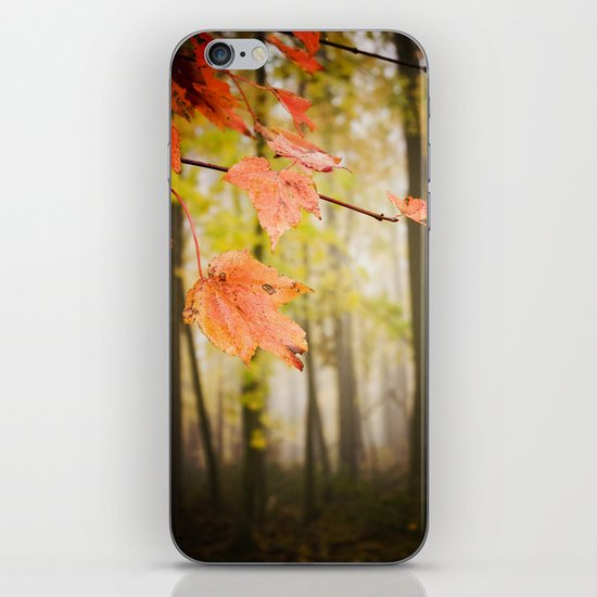 Autumn Fire iPhone & iPod Skin