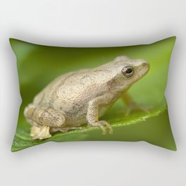 Spring Peeper Rectangular Pillow