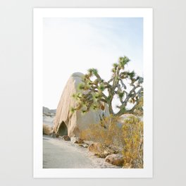 Jumbo Rocks Campground, Joshua Tree Art Print