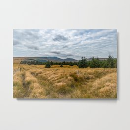 A view of Brecon Metal Print