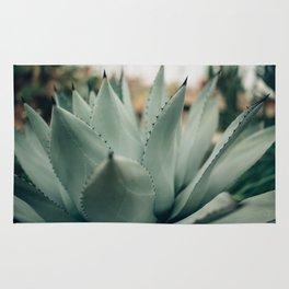 Agave Succulent Rug