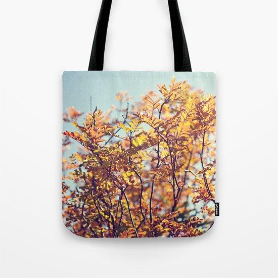 Mountain Fall Tote Bag