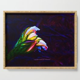 """Cactus Flower At Sunset #85"" Photograph Serving Tray"