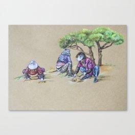 Gardening Ajummas Canvas Print