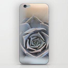 Cactus in Birdcage iPhone Skin