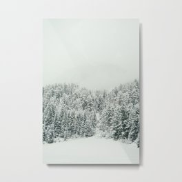 White Snowy Landcape Metal Print