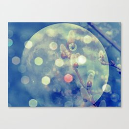 Fullmoon Sping Canvas Print