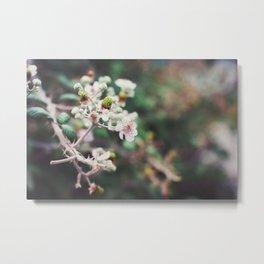 Rubus Metal Print