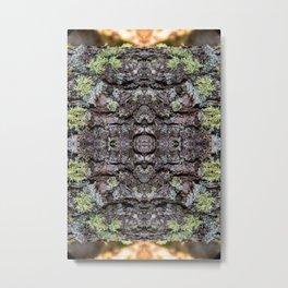 Fairy Ring - Tree Bark Natural texture  Metal Print