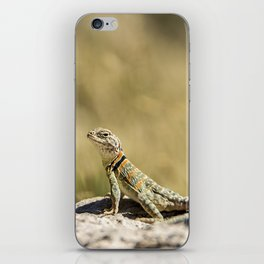 Lizard At Attention iPhone Skin
