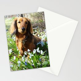 Dachshund with spring flowers by poppyshome Stationery Cards