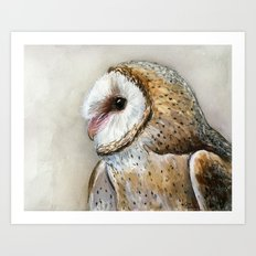 Barn Owl Watercolor | Birds Of Prey Wild Animals Owls Art Print