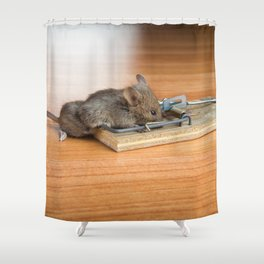 Dead Mouse in Trap Shower Curtain