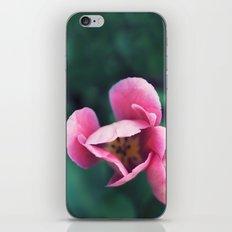 Be Beauty. iPhone & iPod Skin