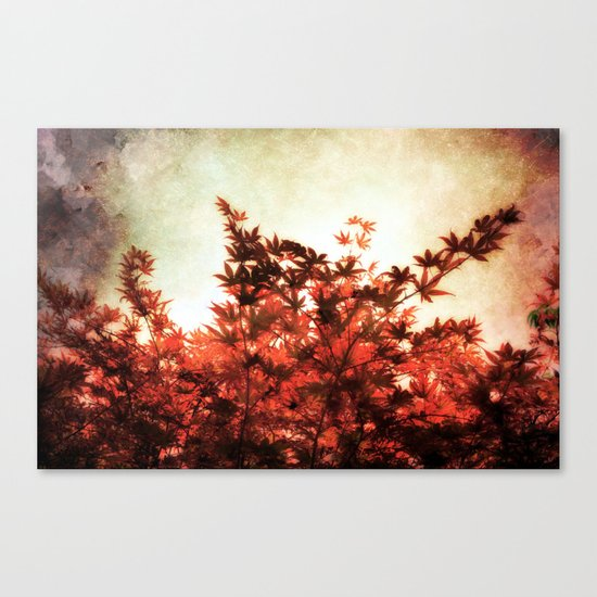 Red Leaves on Trees Canvas Print