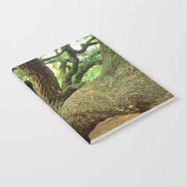 Angel Oak 3 Notebook