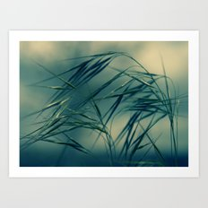 Magic wind Art Print