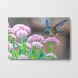 hummingbird #society6 #decor #buyart Metal Print