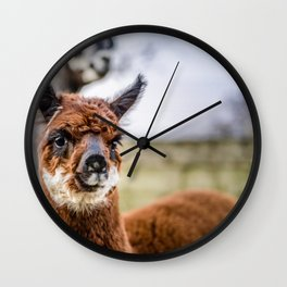 Moonlight Alpaca Kendal Wall Clock