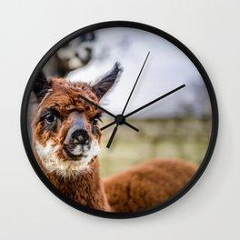 Moonlight Alpaca Kendal Wall Clock