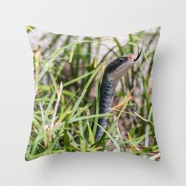 Black Garden Snake  Throw Pillow
