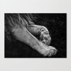 Paw Canvas Print