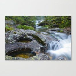Waterfalls in wild forest Canvas Print
