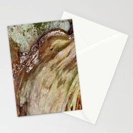 Vibrant Wood Decay Stationery Cards