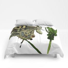 Scarce Swallowtail Comforters