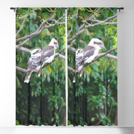 Kookaburras Blackout Curtain