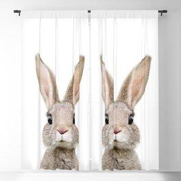 Baby Rabbit Portrait Blackout Curtain