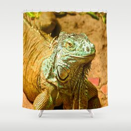 Smily Shower Curtain
