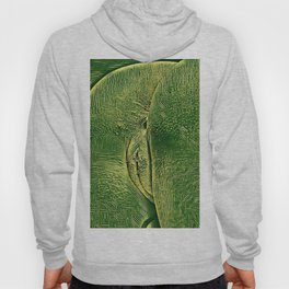 3757s-DRL Explicit Motherboard Booty Fine Art Tech Naked Traces Hoody