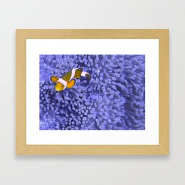 Nemo Framed Art Print