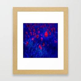Red in Blue Framed Art Print