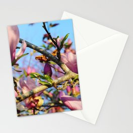 Bright Blooms Stationery Cards