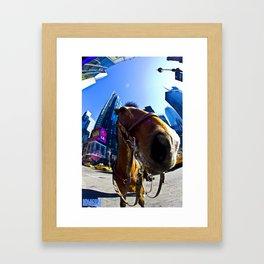 NYPD Horse Framed Art Print