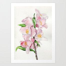 Blushing Beauties Art Print