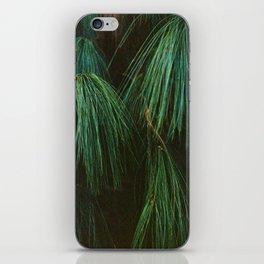 Long Pine Needle Detail iPhone Skin